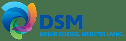 Elsbroek - DSM